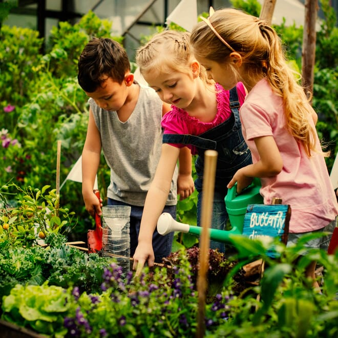 kids-plants